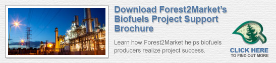 Biofuels project support services