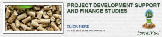 Project development support and finance