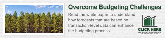 Forecasts to Overcome Budgeting Challenges