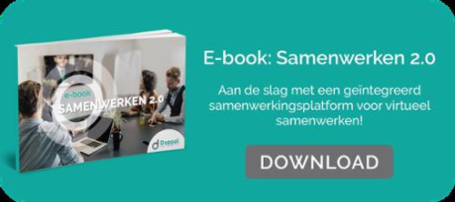 E-book Samenwerken 2.0