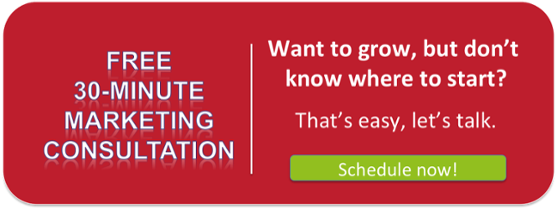 Free 30-Minute Marketing Consultation