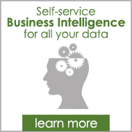 Learn More About Self-Service Business Intelligence