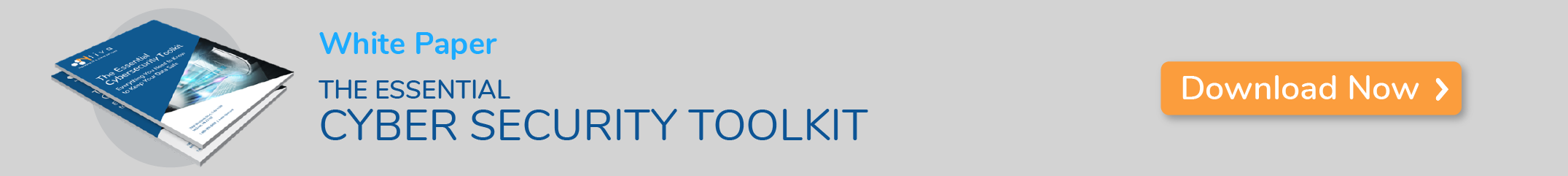 The Essential Cybersecurity Toolkit E-Book Download Call to Action
