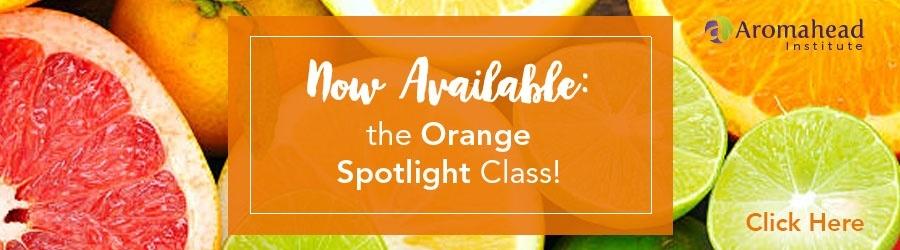 Now Available: the Orange Spotlight Class