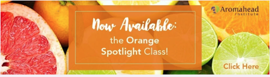 Orange Essential Oil Spotlight