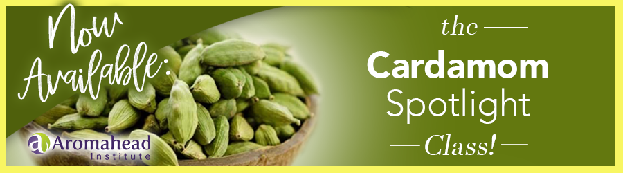 Join us in the Cardamom Spotlight Class!