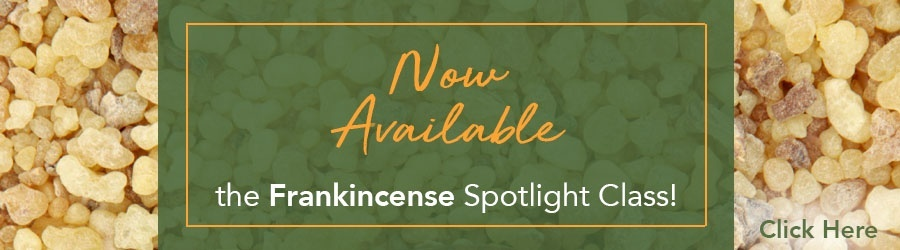 Now Available: the Frankincense Spotlight Class