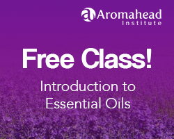 Aromatherapy Certification Program