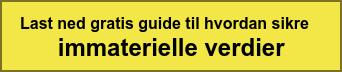 Last ned gratis guide til hvordan sikre  immaterielle verdier