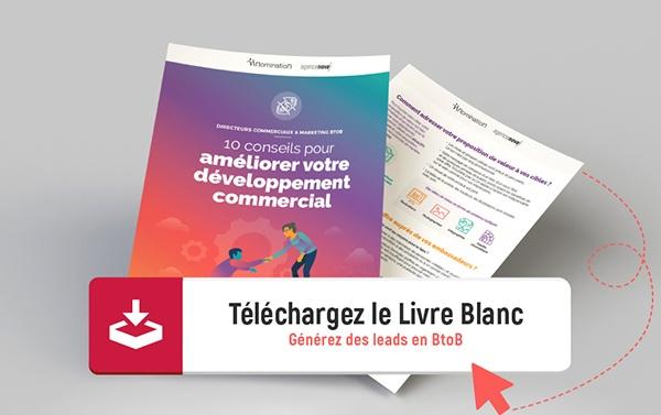 Livre Blanc Génération de leads BtoB