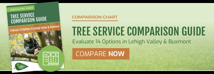 Tree Service Comparison