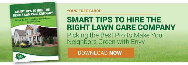 Why do lawn care companies insist on grub control for Lawn treatment companies