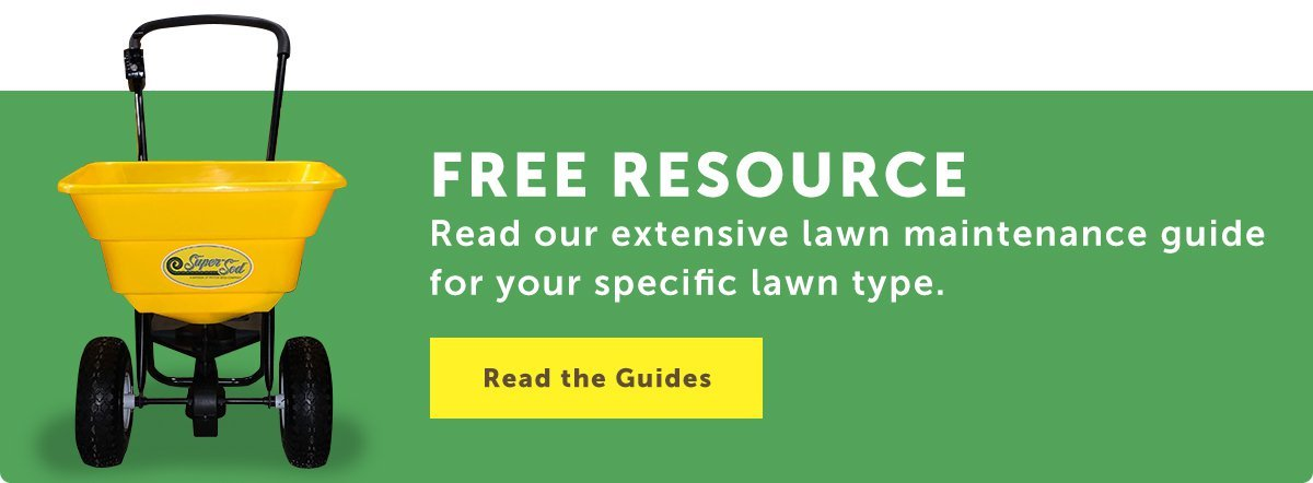 link to Lawn Maintenance Guides