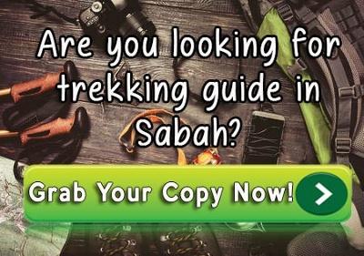 Essential Trekkers Guide CTA
