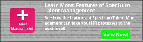 Spectrum Talent Management
