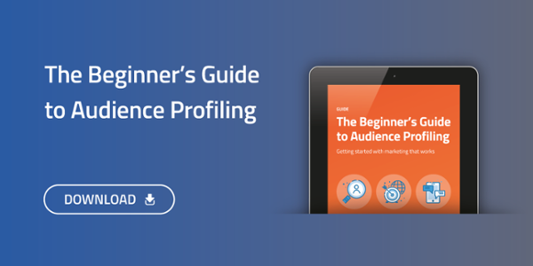 Download The Beginners Guide to Audience Profiling