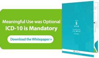 Meaningful Use was Optional, ICD 10 is Mandatory - Download the Whitepaper