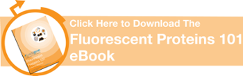 Download the Fluorescent Proteins 101 eBook