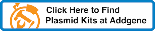 Click Here to Find Plasmid Kits at Addgene