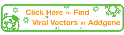 Click Here to Find Viral Vectors at Addgene