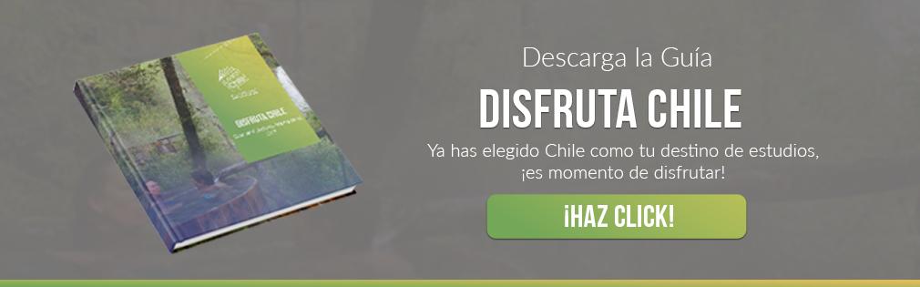 Disfruta Chile