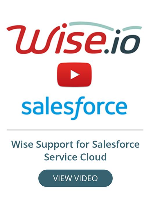 Salesforce Cloud Service Demo, Wise.io