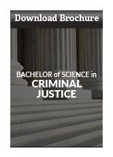 Download Criminal Justice Program Brochure