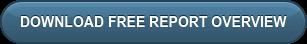 下载免费报告概述