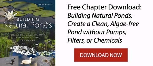 Building Natural Ponds