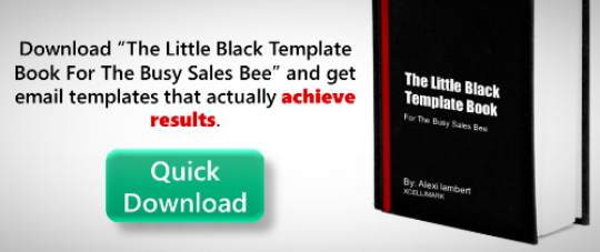 Download The Little Black Template Book For The Busy Sales Bee