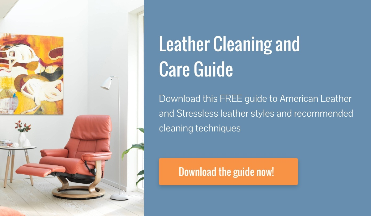 Leather Cleaning and Care Guide