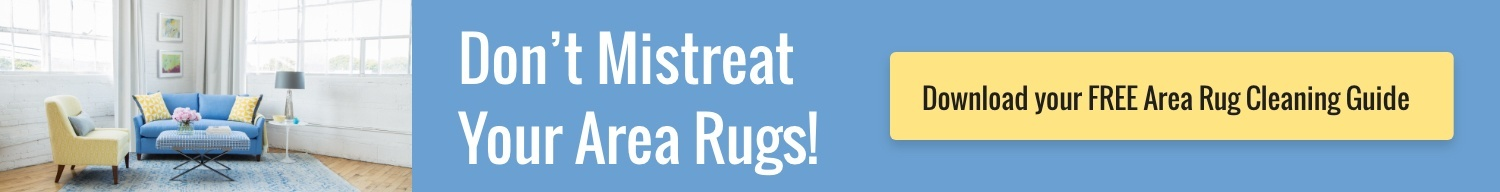 Area Rug Cleaning Guide