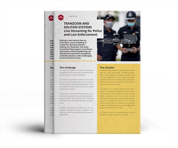 download Red Cross Case Study