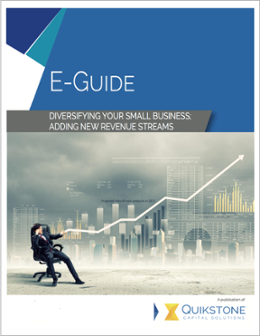 Diversifying Your Small Business E-Guide