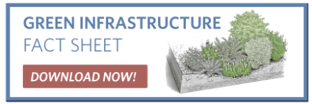 Green Infrastructure Fact Sheet - Charles River Watershed Association