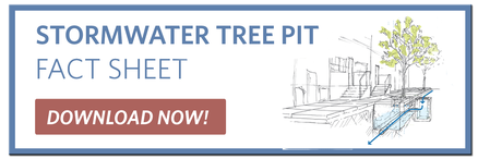 Stormwater Tree Pit