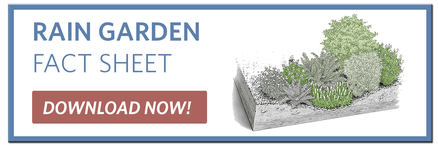 Rain Garden Fact Sheet - Charles River Watershed Association
