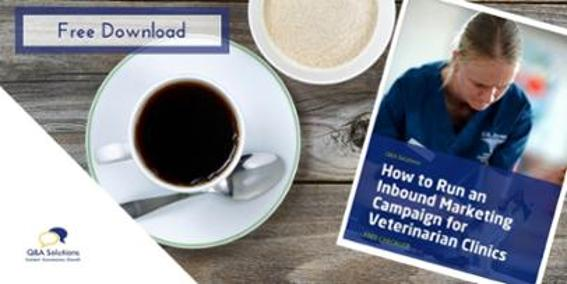 veterinary_marketing_ideas