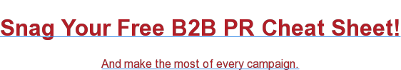 Snag Your Free B2B PR Cheat Sheet! And make the most of every campaign.