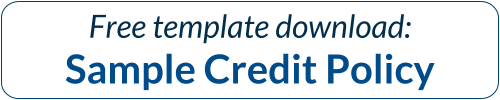 Download Credit Policy Sample Now