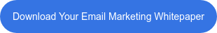 Download Your Email Marketing Whitepaper
