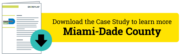 Download the Miami-Dade County Case Study