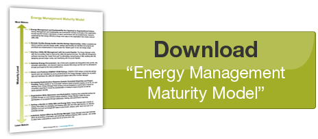 "Download ""Energy Management Maturity Model"""