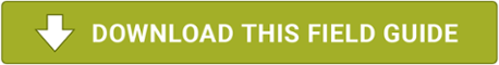 Download the Customer Savings Field Guide