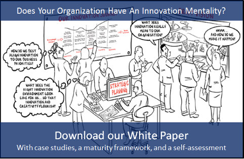 download the innovation maturity white paper