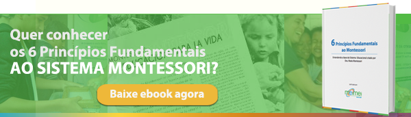 6 Princípios Fundamentais ao Montessori