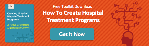 Dowload the Free Toolkit: How to Create Hospital Treatment Programs