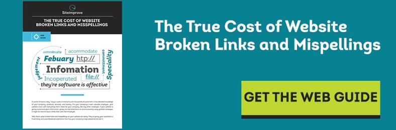 Download the True Cost of Broken Links and Misspellings Web Guide