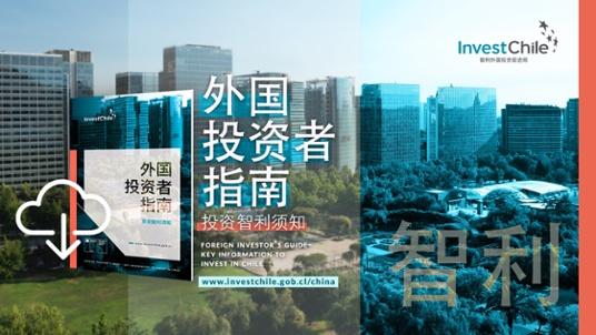 Guía del Inversionista en Chino