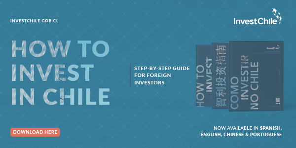 Foreign Investor's Guide Languages